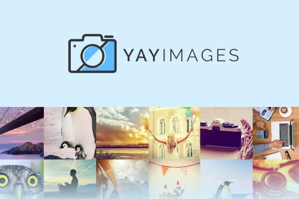 yay images startups